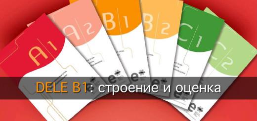 Как сдать DELE B1: строение и оценка